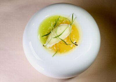 FUEGO DIVINO |Persimmon flesh & fennel with lemon verbena ice|