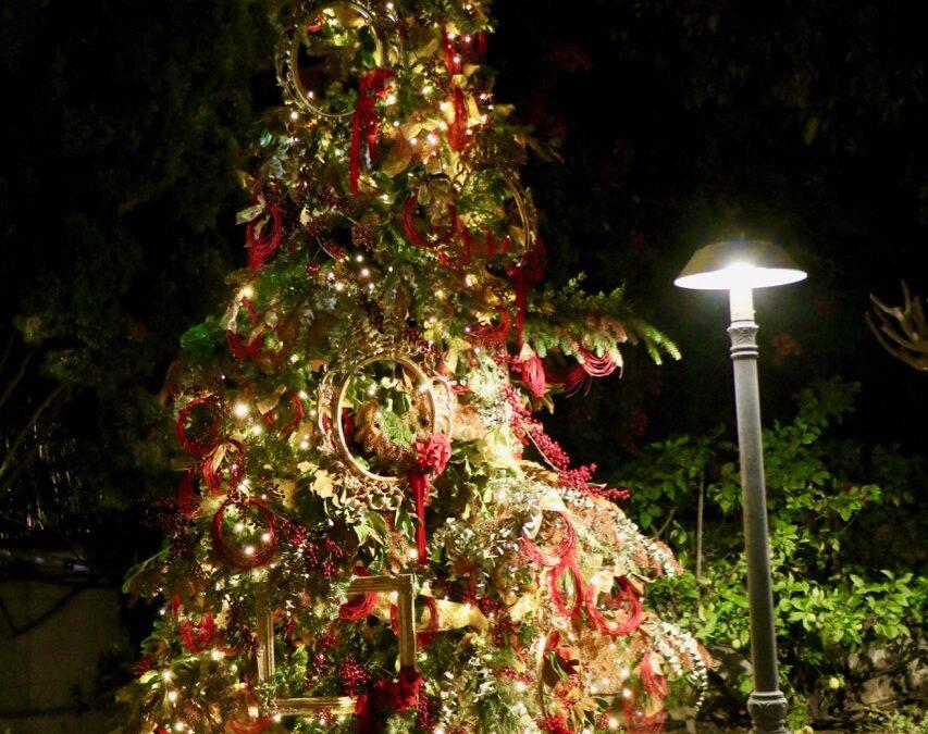 Una Navidades diferentes en Villa Antonia
